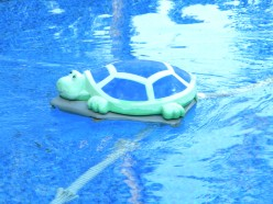 The Polaris Turbo Turtle doing what it does best,  keeping your pool clean while you relax.