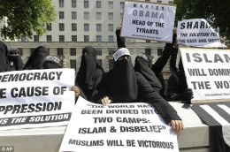 Demonstrations during Obamas recent visit to England.