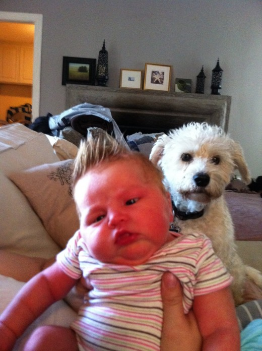 My daughter at four day's old (she's the redhead).  Not sure about the white-haired lady.  Classic case of a photobomb? (See below for definition & examples  of photobomb.)
