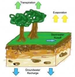 Evapotranspiration is a part of the Hydrologic Cycle