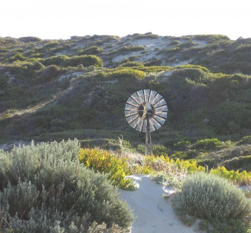 Windmill in the dunes