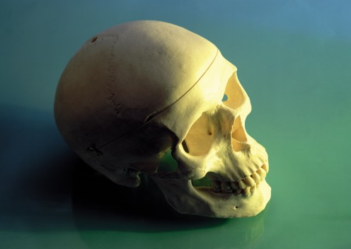 Dr. Kevorkian often painted the human skull in his artwork.