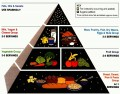 Healthy Eating Guides Remain Confusing after Food Pyramid Flattened to MyPlate