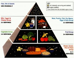 australian dietary guidelines healthy food plate