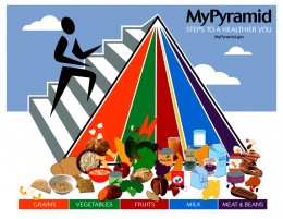MYPYRAMID 2005