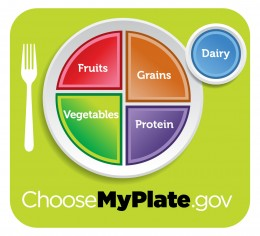 MyPlate instead of the Food Pyramid