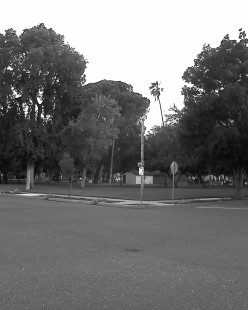 Central Park in Newman, Ca.