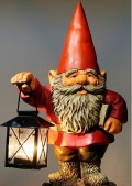 Everything You Want To Know About The Gnome