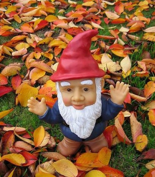 Gnome By Sir Fish