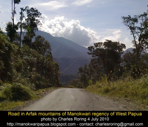 This is a road leading to Arfak mountains in Manokwari regency of West Papua Province of Indonesia
