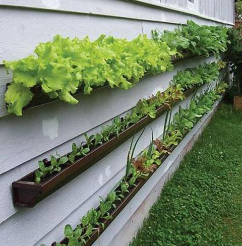 Making the most of space. A new trend in gardening. Image from thetinylife.com