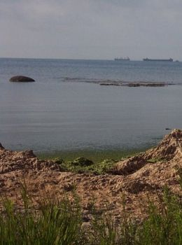 Reebs Bay, on the north shore of Lake Erie, a land far away.