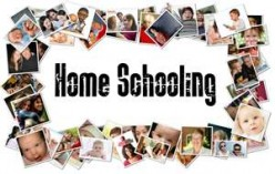 Homeschooling, Absolutely Free Curriculums, Free Online Resources, and Virtual Schools