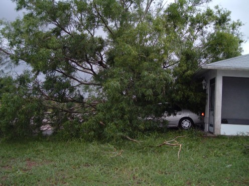 Front of my house after Hurricane Charley. The little black head at the front porch, is my little dog Poppy peeking out .