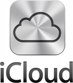 Do you think Apple's iCloud service going to be a big success?
