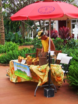 selling macadamia nuts at the farmers' market