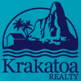 teetower.com krakatoa realty volcano eruption ocean palm trees hut