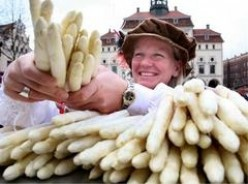 White asparagus at open market in Germany