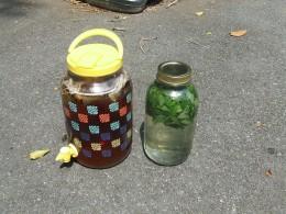 I put the sugar in the mint jar.