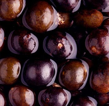 The evil, distressing acai berries take no prisoners