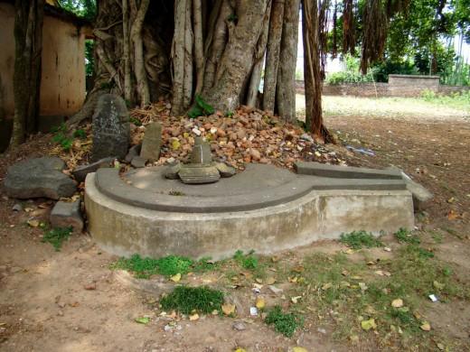 Huge GAURIPATTA (symbol of Goddess Durga) without the customary Shiva Lingam