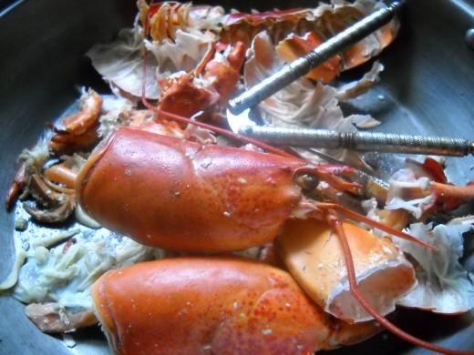 Lobster shell
