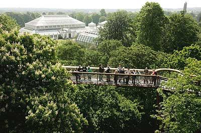 Xstrata Treetop Walkway at Kew Gardens, London, England