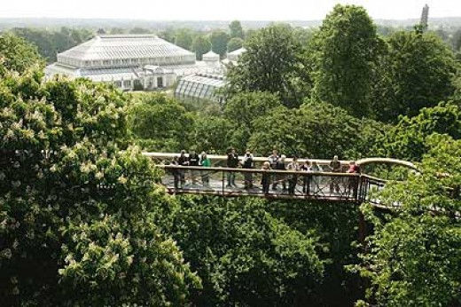 Xstrata Treetop Walkway at Kew Gardens, London, England