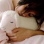 Injured lamb profile image