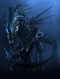 The almight Alien Queen