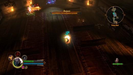 Dungeon Siege 3 Rajanni Human Form