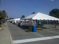 Happenings in my neighborhood - Lakewood Arts Festival