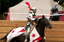 Jousting by P D