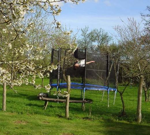 The new ttrampoline in the garden
