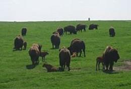 Blue Mounds State Park, Minnesota.