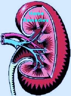 Kidney Problems? - Home remedies that can help