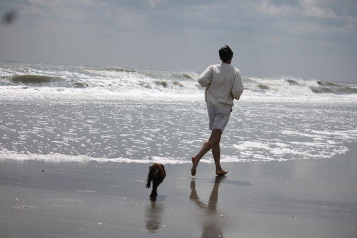 A puppy and owner enjoy the ocean