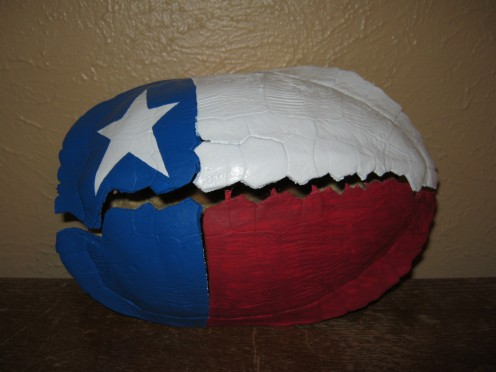 I painted the Texas state flag on this old turtle shell I found at a lake to turn this natural object in to creative art.