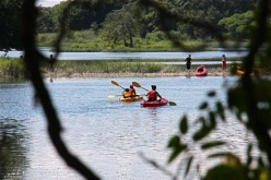 A group of kayakers explored and paddled along Gray's Creek as viewed from Westport's Compo Beach Road. Larry Untermeyer for WestportNow.com