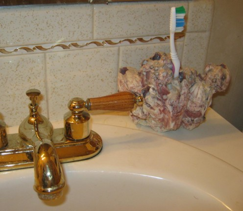 I use a colorful barnacle as a toothbrush holder.