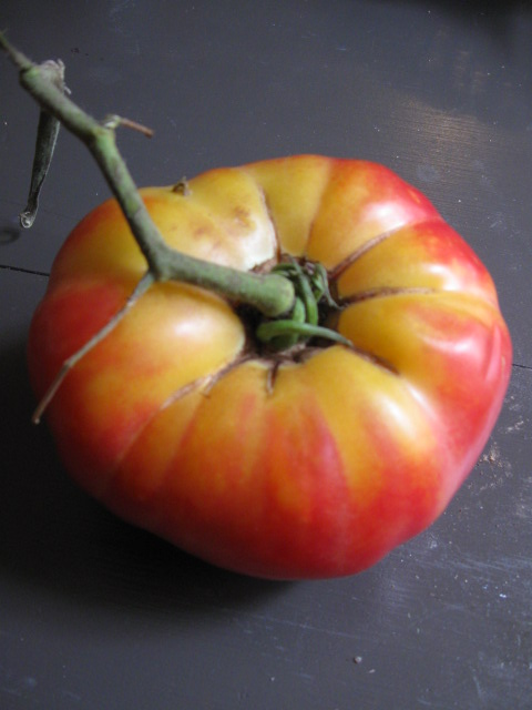 A tomato from La Vista Community Supported Garden