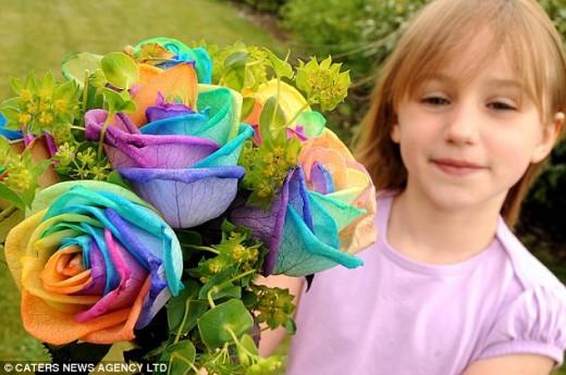 Bouquet of rainbow roses