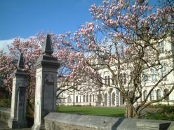 Cardiff University Main Building entrance