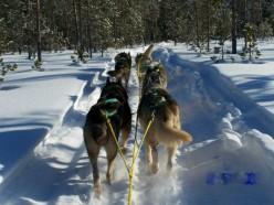 5 unique experiences in Northern Sweden Lapland