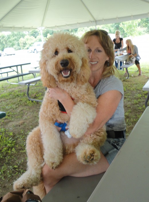 Image of Julie Arsenault of Waynesboro, Pa., with her Goldendoodle, Bisbee.
