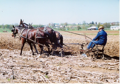 Holmes County farmer.