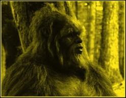 Bigfoot & UFO Vortex Energy Beam - Tennessee and Arkansas