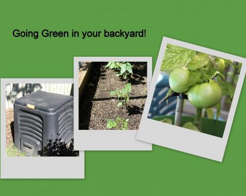 Just a few ways i've made my yard Greener!