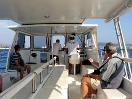 The Ferry to Medena