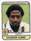 Sylvester Clarke was a nasty proposition on any wicket.